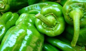 Green Chile Peppers